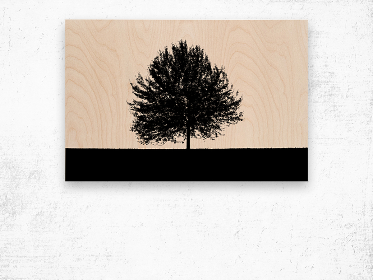 Silhouette of a lonely tree Wood print