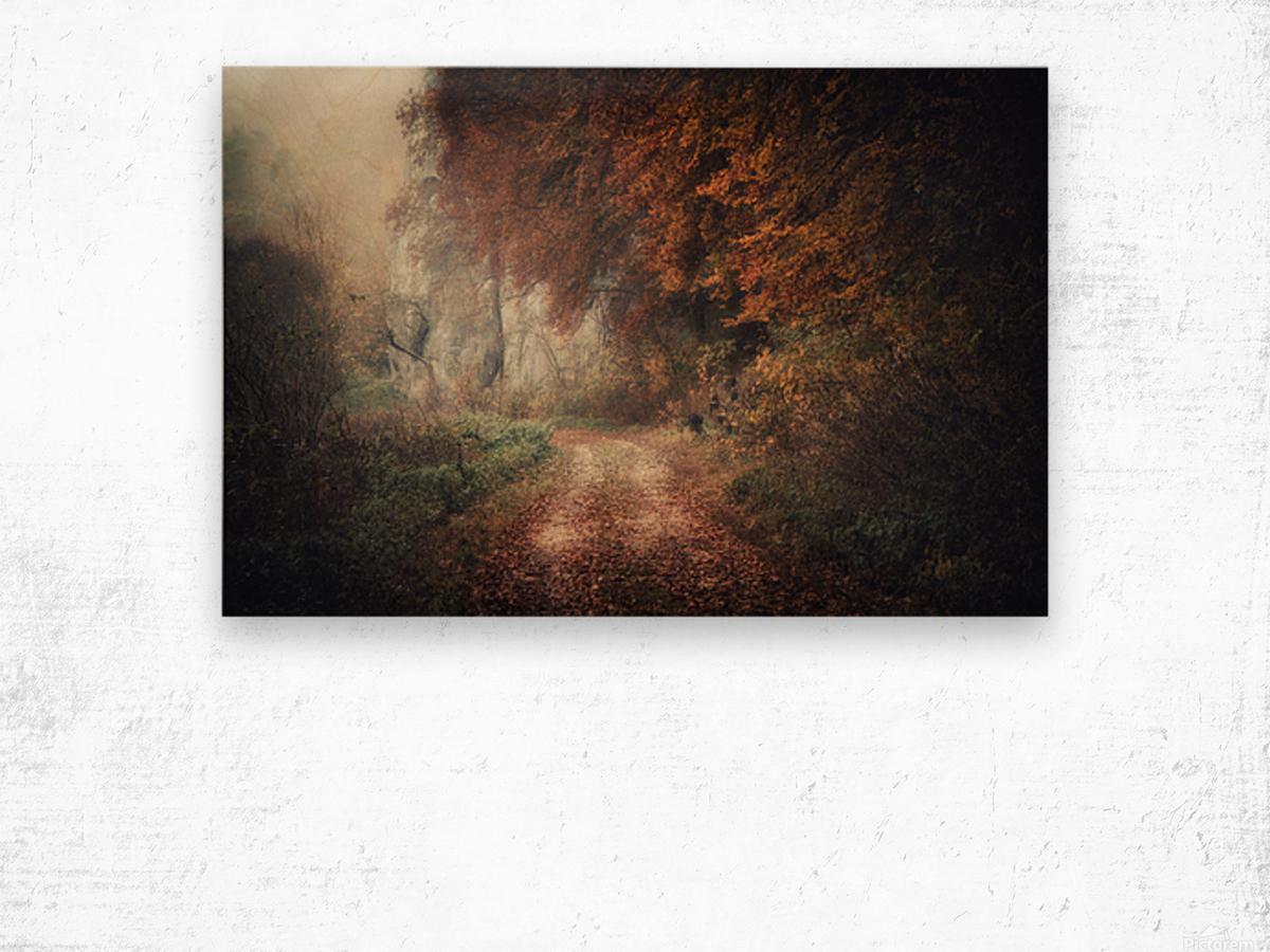 Foggy autumn forest Wood print