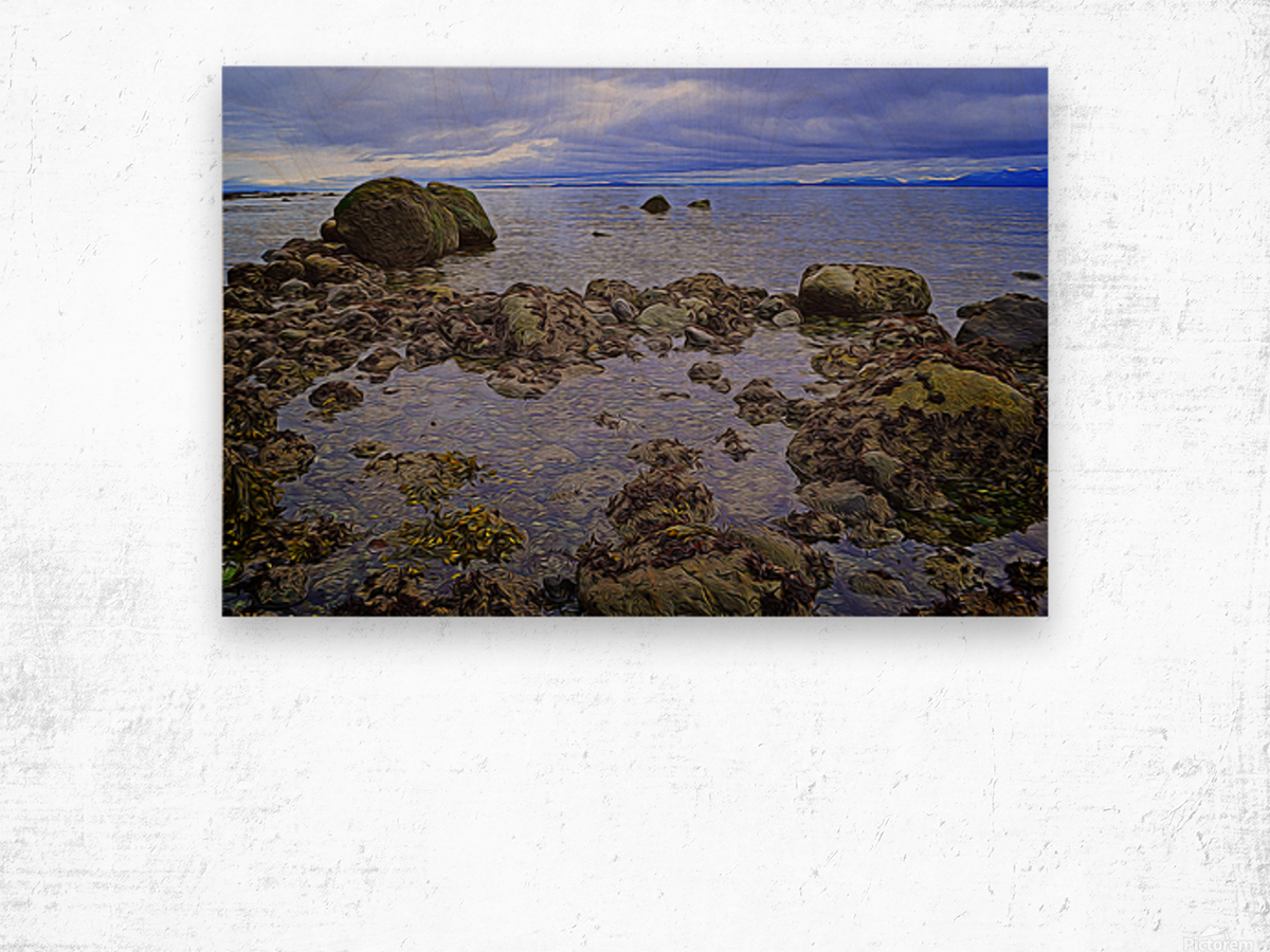 Tranquility at Low Tide Wood print