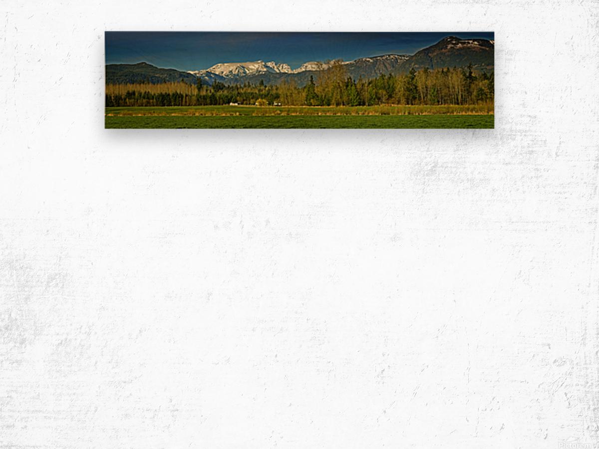 Comox Glacier Panorama Wood print