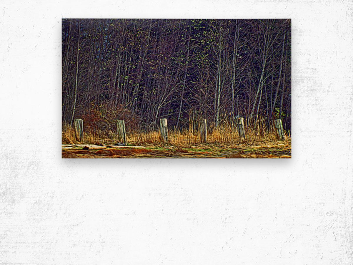 Weathered Fence Posts Wood print