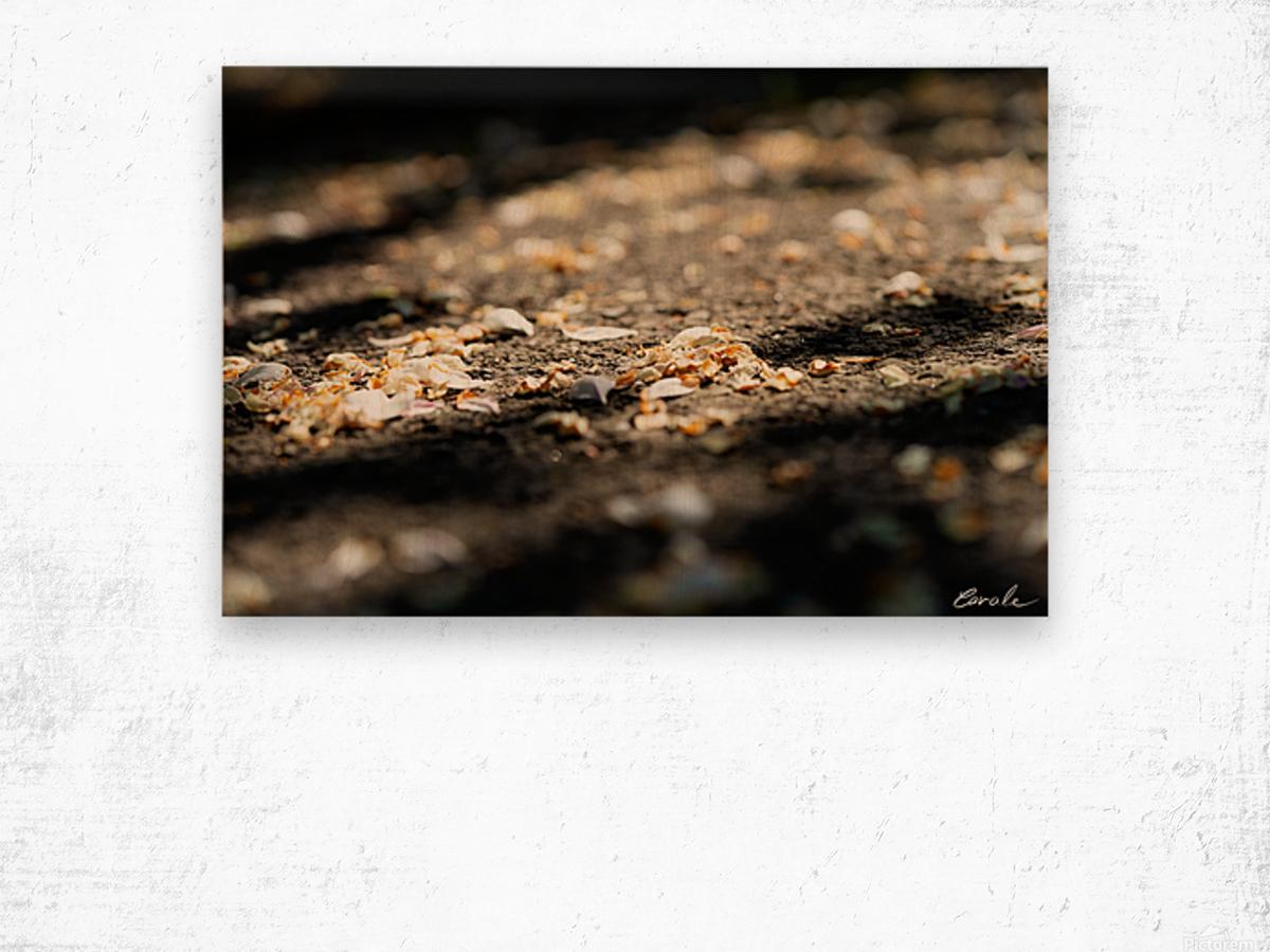 Confettis sur bitume Impression sur bois