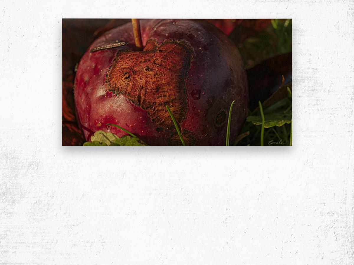 La pomme tatouee - The tattooed apple Impression sur bois