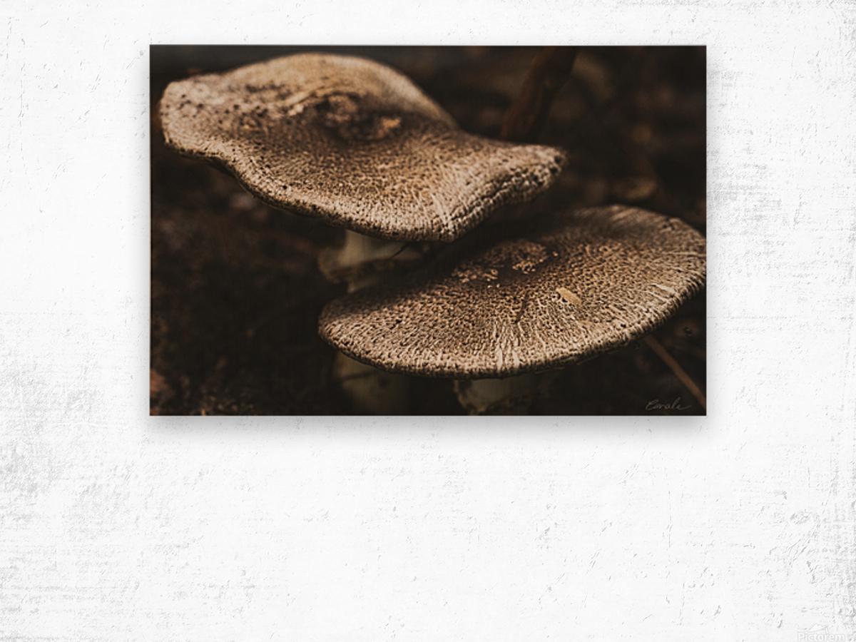 Petit couple au sous bois - Little couple in the underwoods Wood print