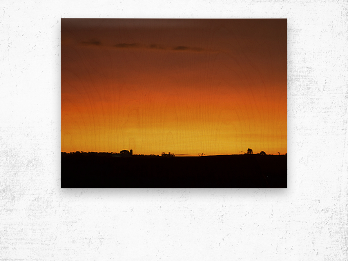 Strong Colours at the End of a Day Wood print