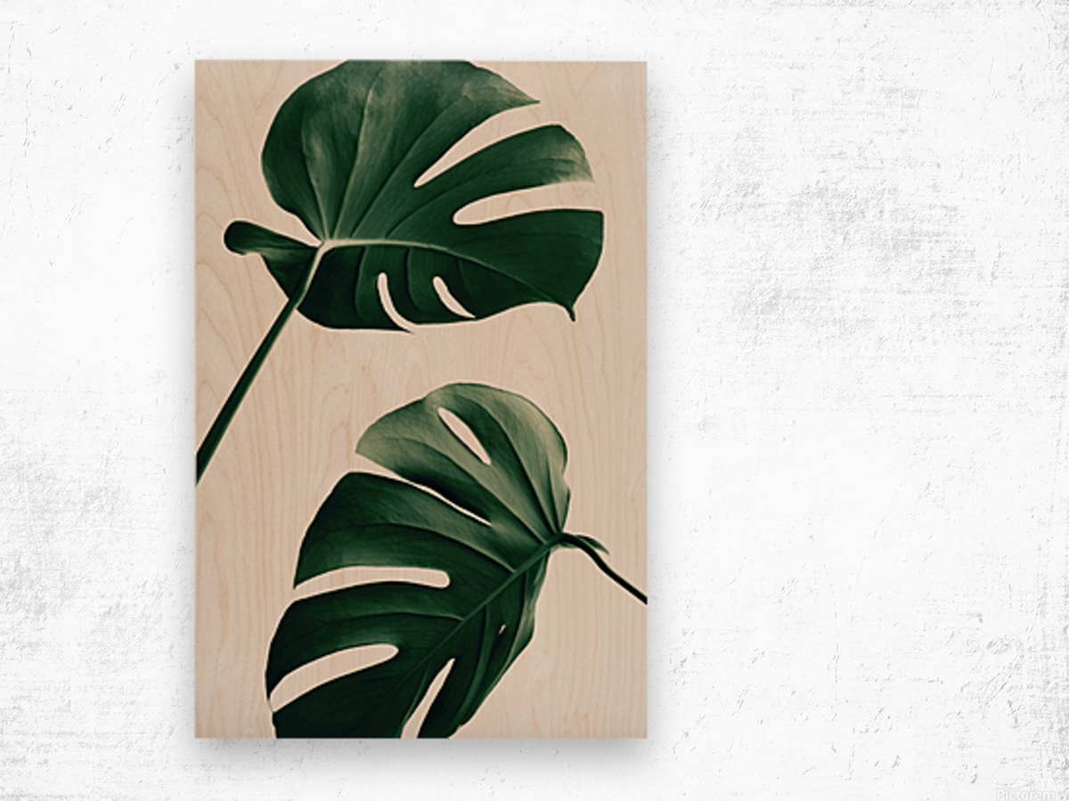Monstera Natural 46 Wood print
