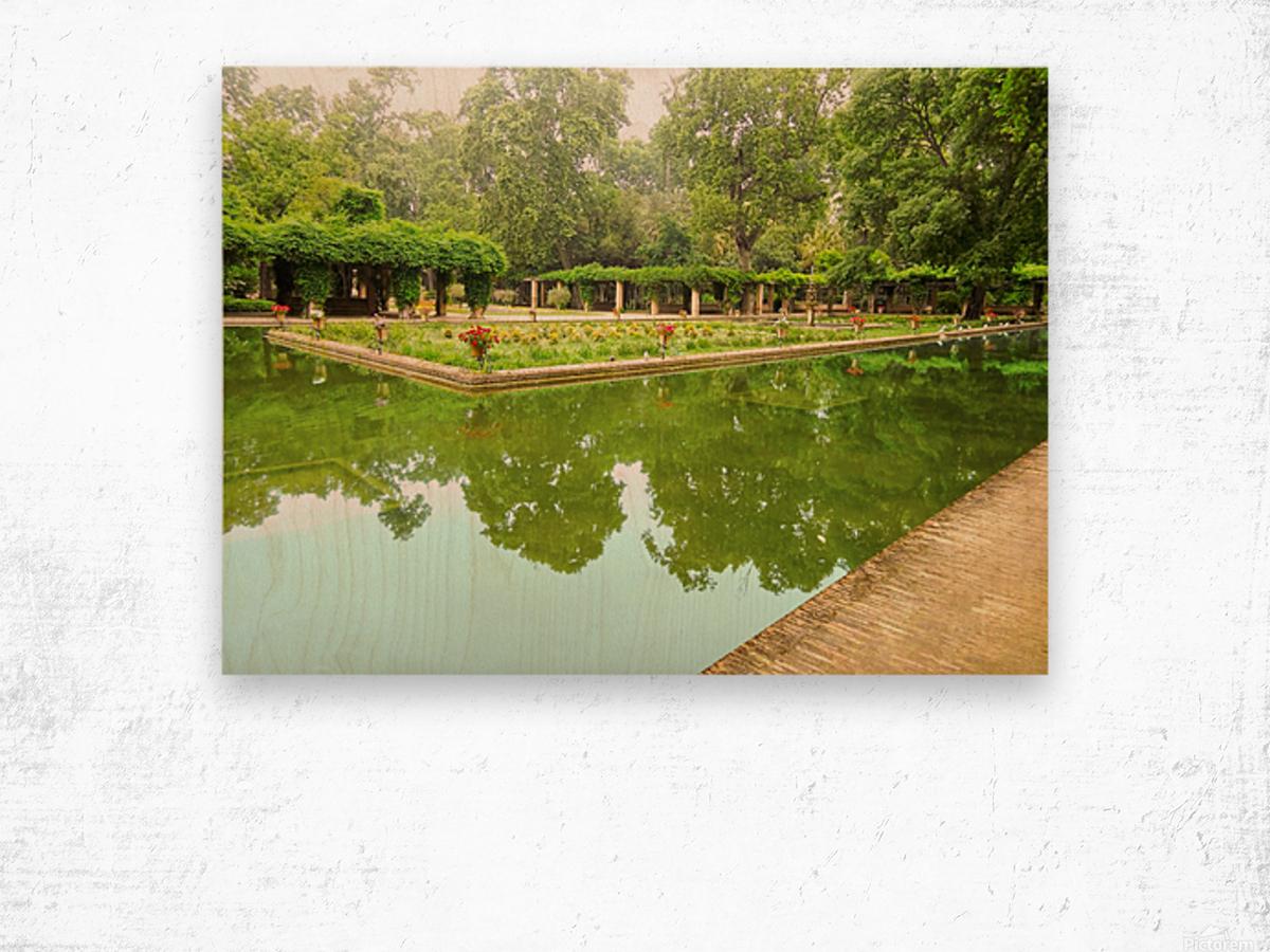 Lotos Pond - Estanque de Los Lotos - Parque de Maria Luisa - Seville Spain Wood print