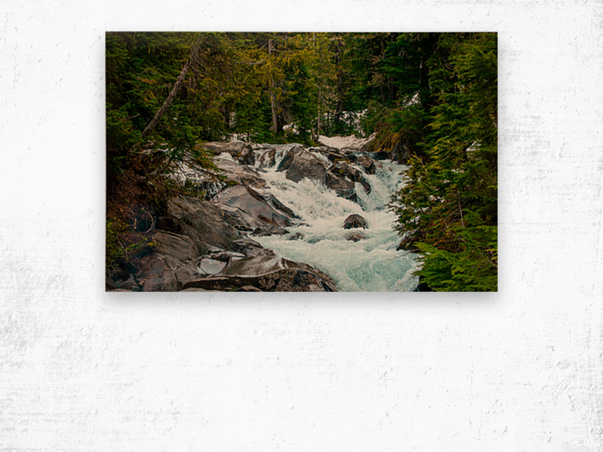 Wild Water in the Mountains Wood print