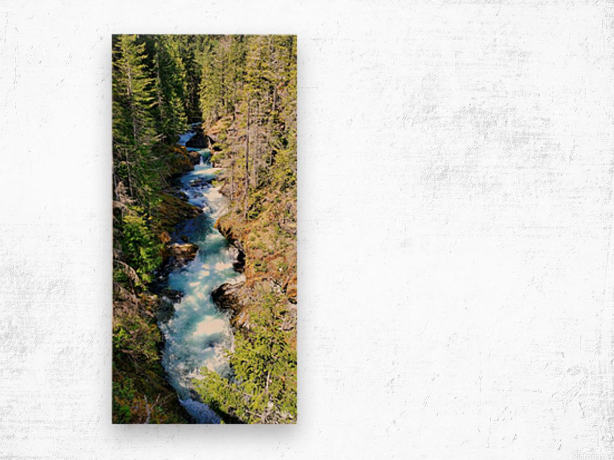Falls Wood print