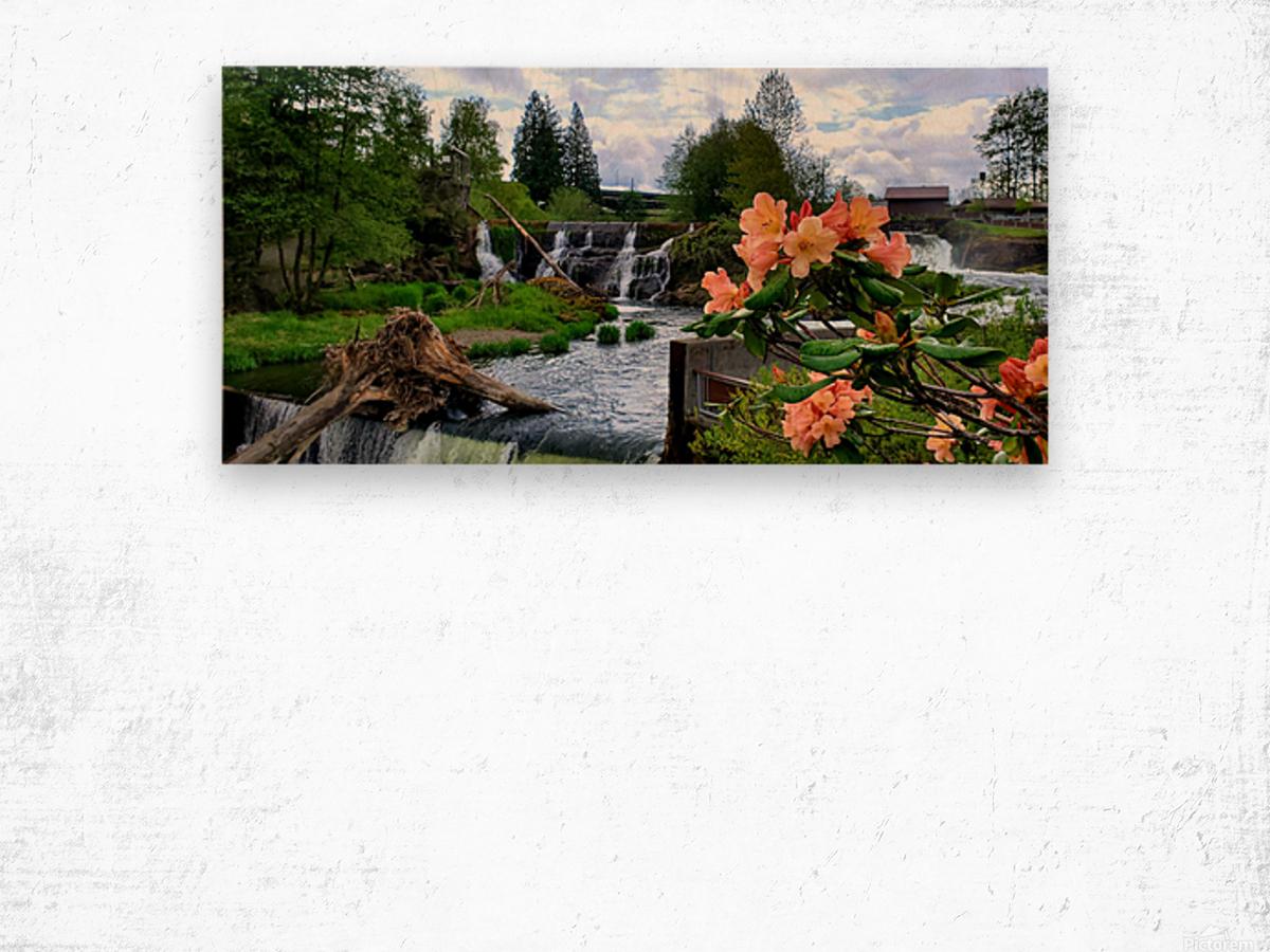 Tumwater Falls Wood print