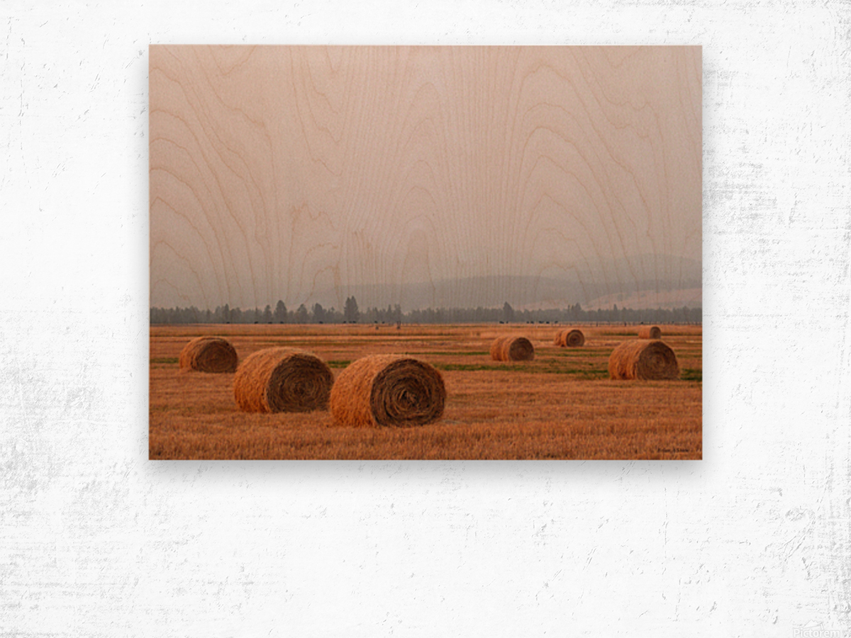 Haybales in a Haze Wood print