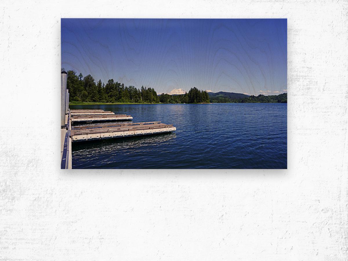 Alder Lake and Mount Rainier Pacific Northwest United States Wood print