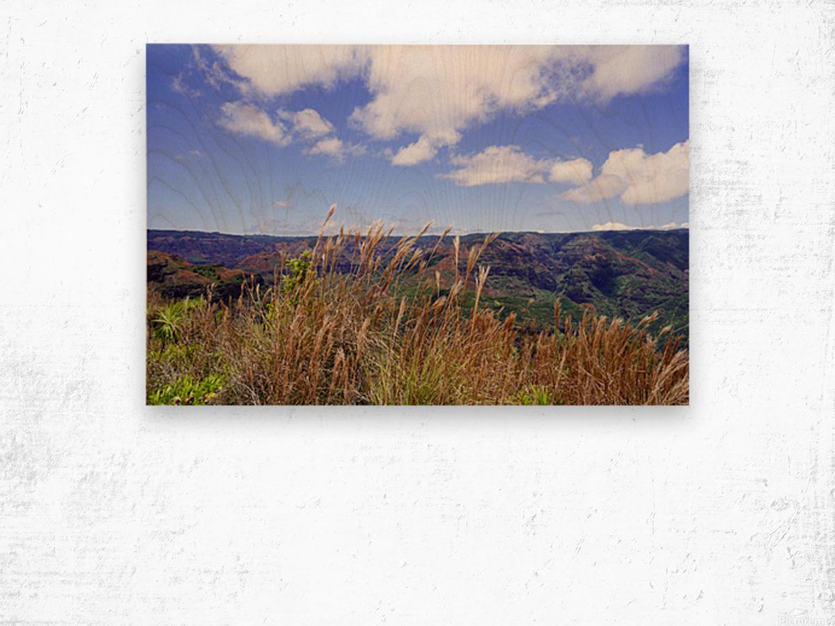 Beautiful View in Waimea Canyon on the Island of Kauai Wood print