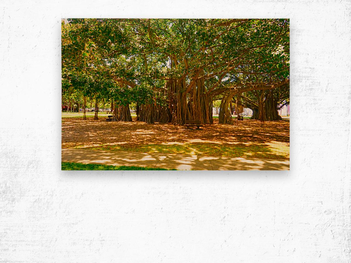Waikiki Snapshot in Time 4 of 4 Wood print