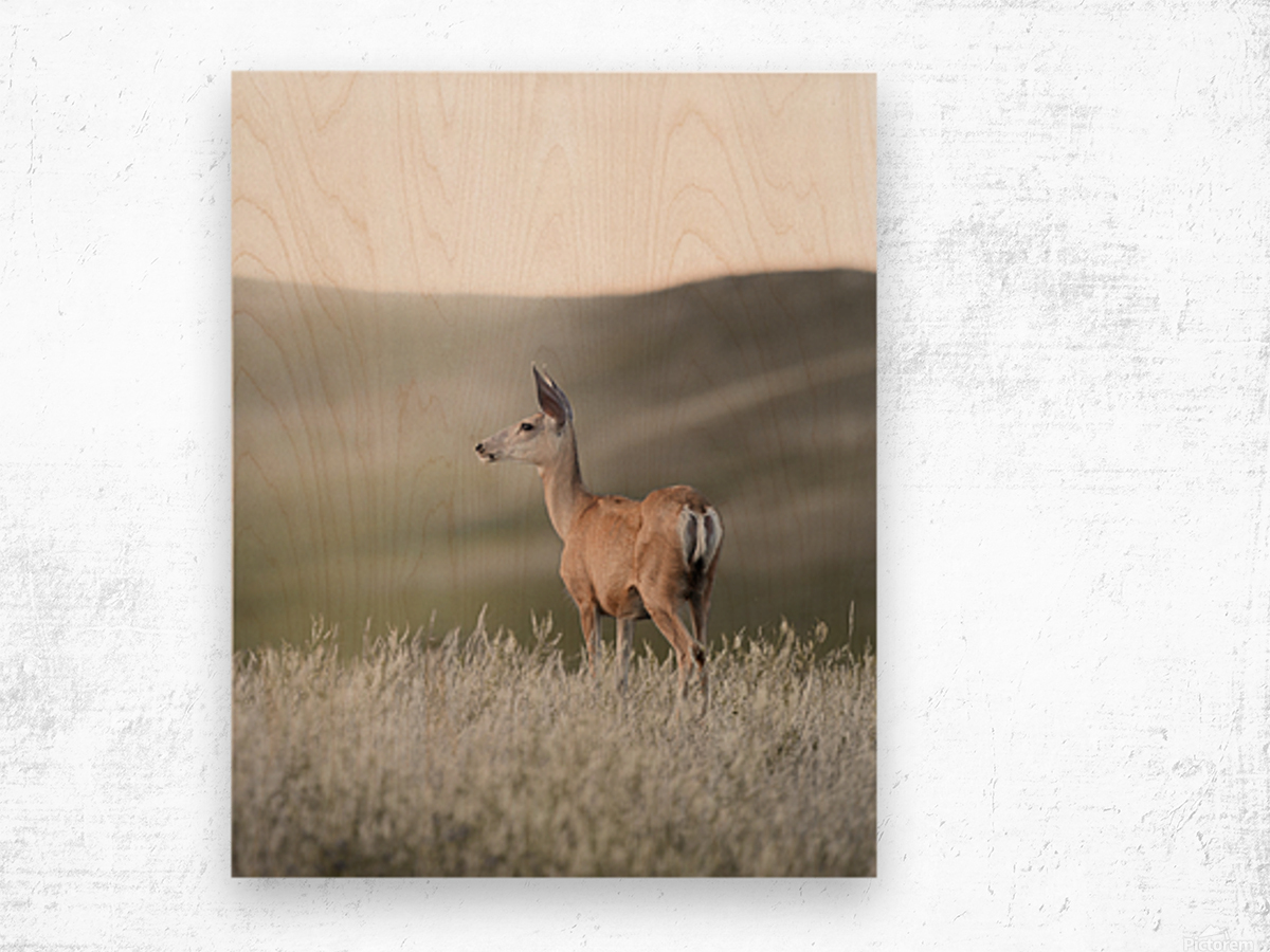 Happy Hour on the Prairie Wood print