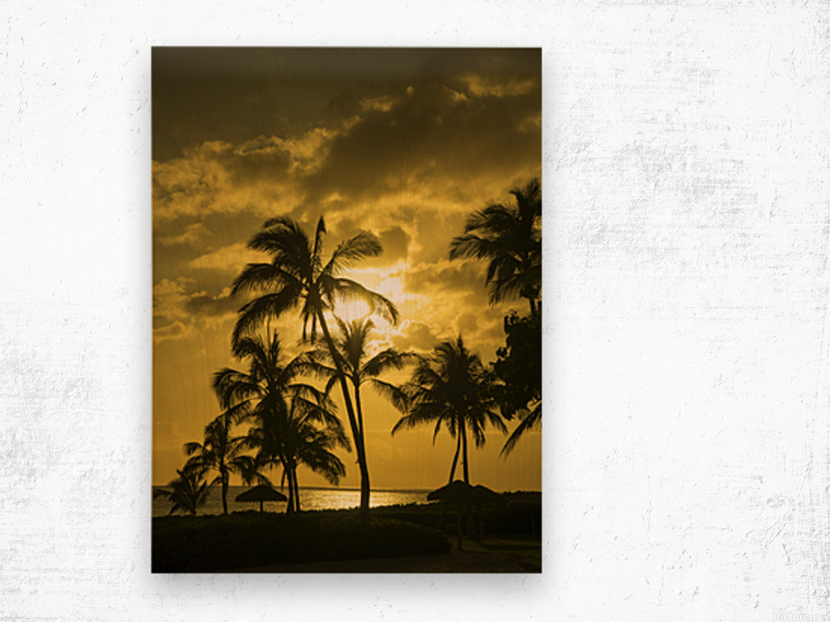 Palms and Hulu Thatched Tiki Umbrellas in the Golden Light of Sunset Wood print