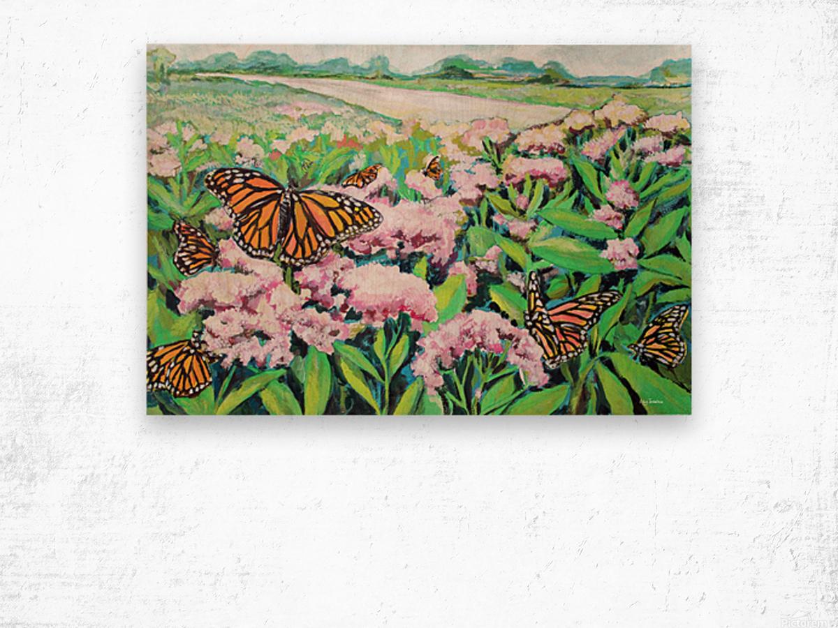 CountyMonrachButterflies Wood print