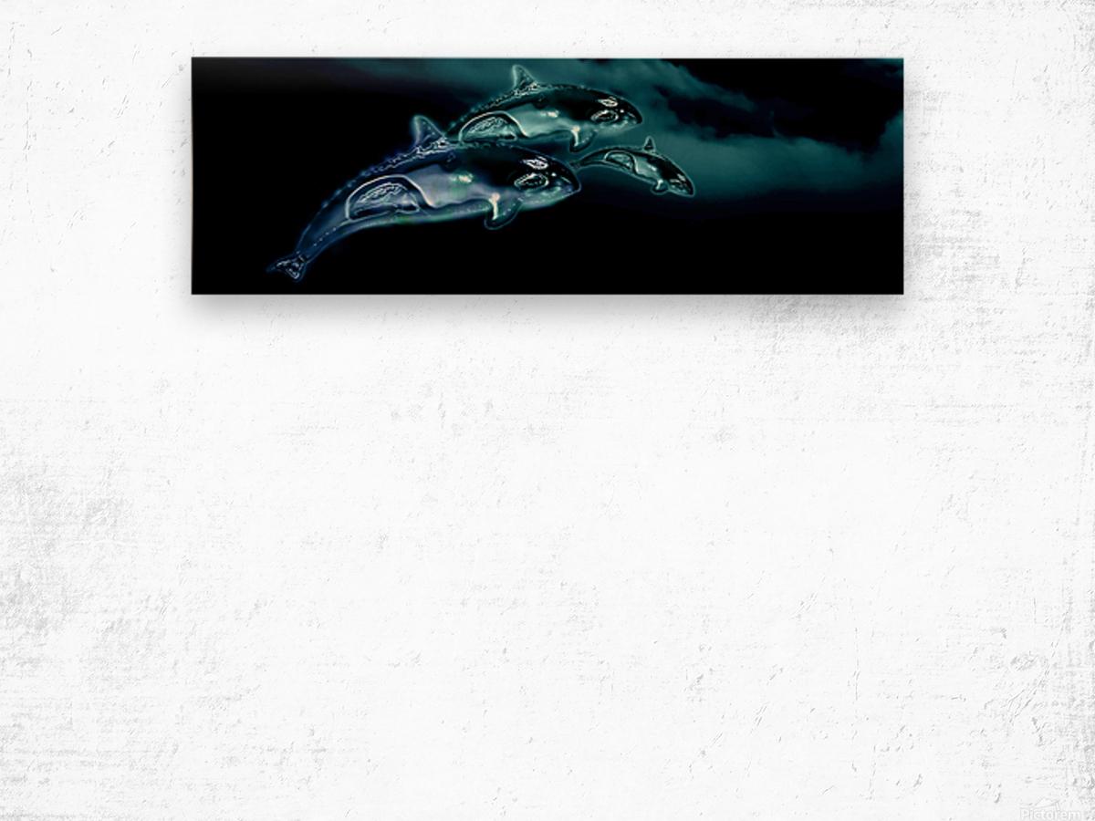 ORCAS LUNARES WIDE 8 Wood print