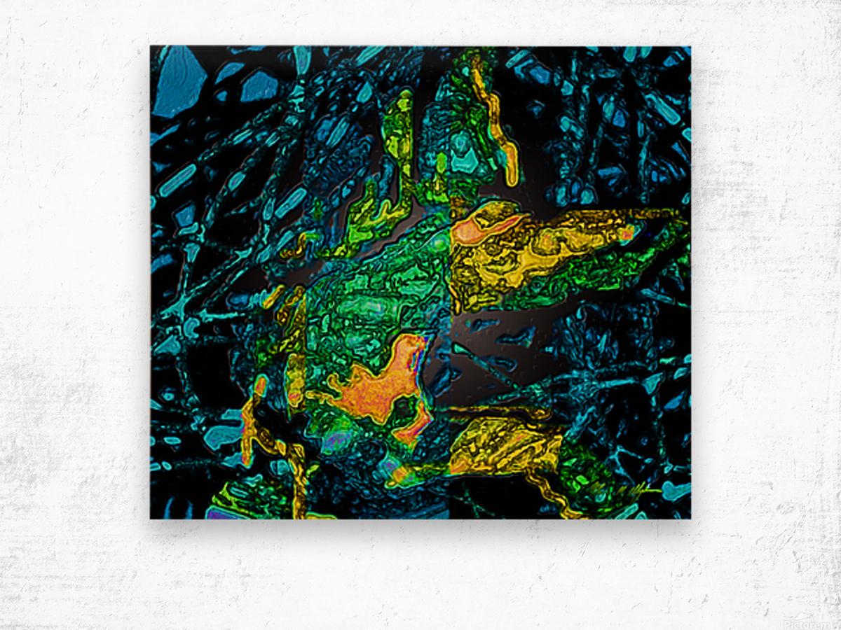 Tangled Transformation 4 Wood print