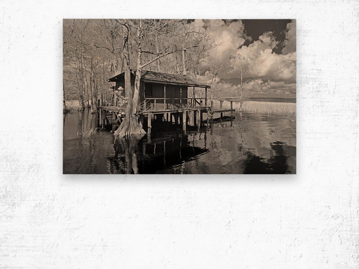 Fish Camp at Blue Cypress Lake Florida Wood print