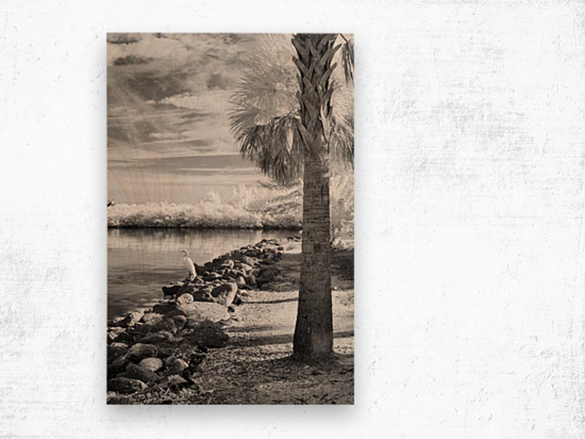 Wabasso Causeway with great white heron Wood print