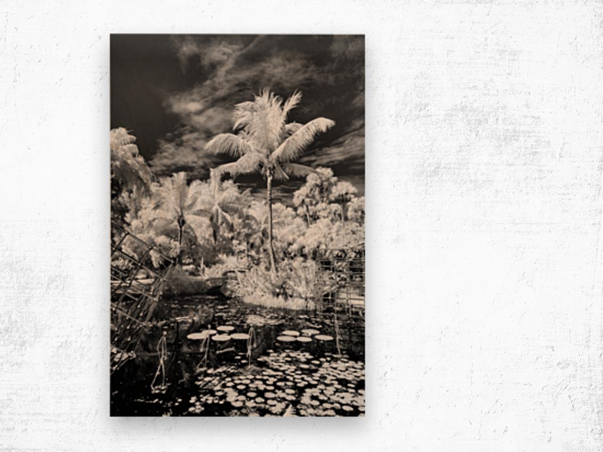 McKee Gardens  Vero Beach  Florida Wood print