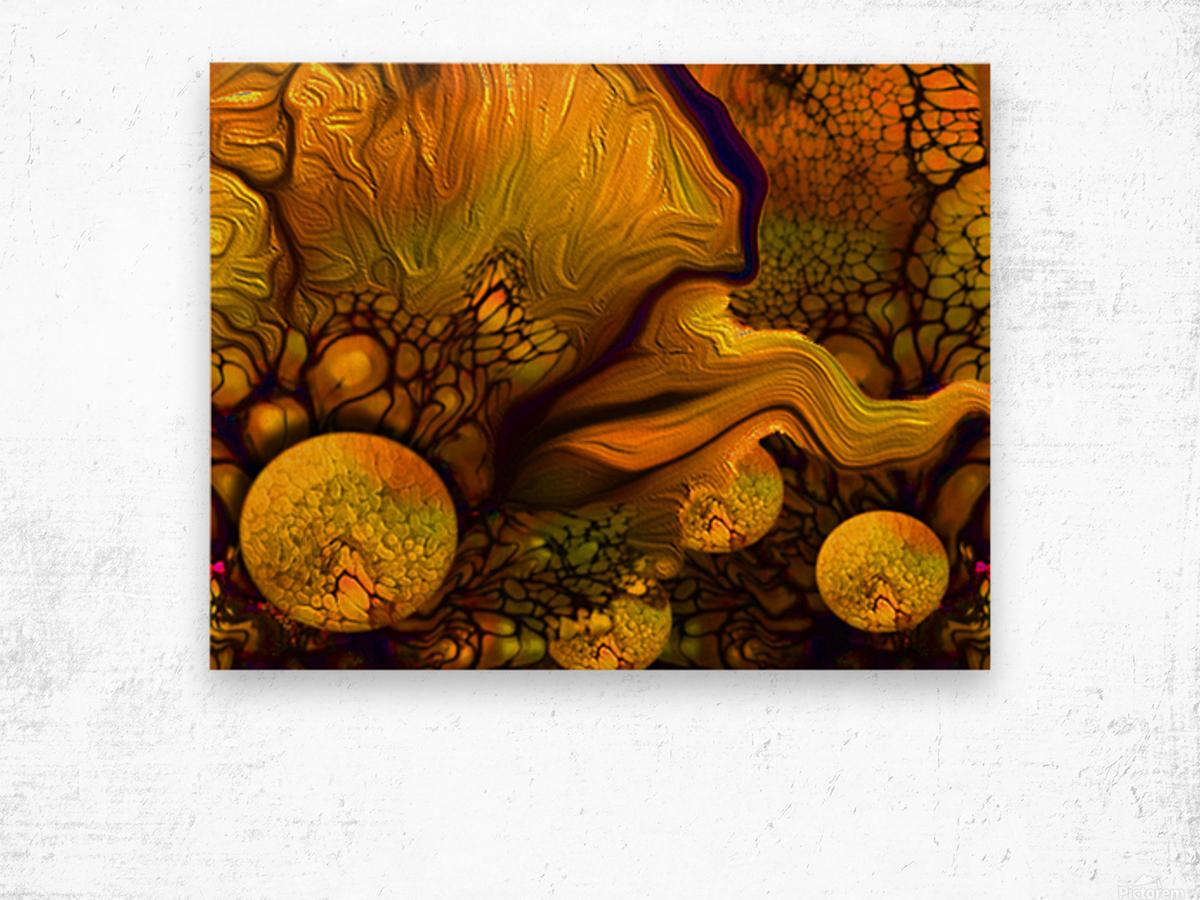 POLLENS SUMMER GLOW 6 Wood print