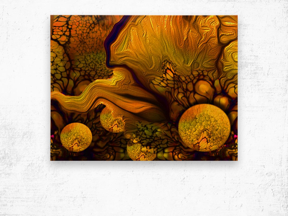 POLLENS SUMMER GLOW 5 Wood print