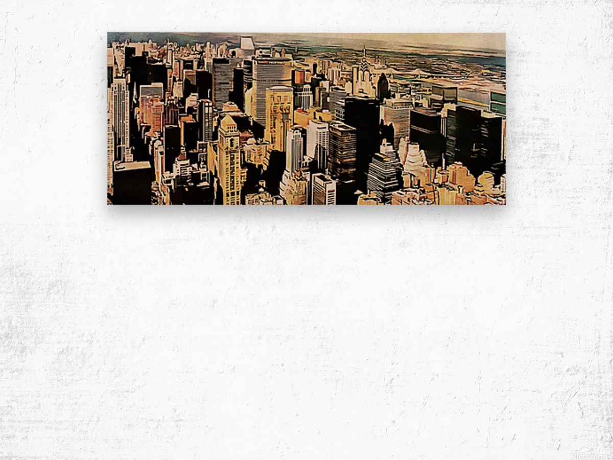 View to the Chrysler Building New York Wood print