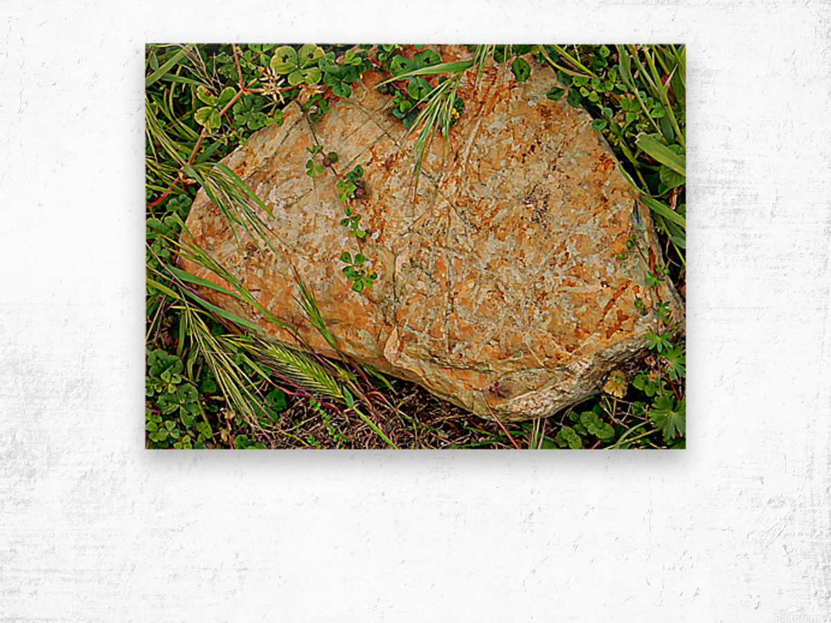 Brown Sandstone Rock With Grass Wood print