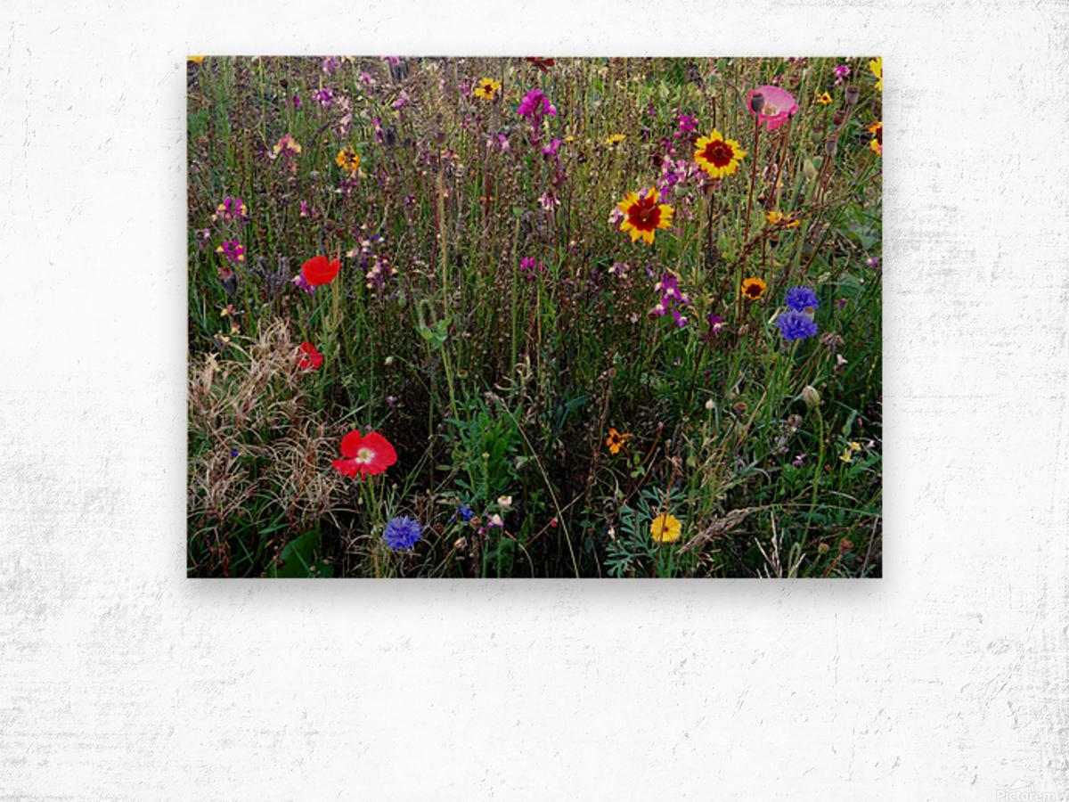 English Cottage Garden Flowers 2 Wood print