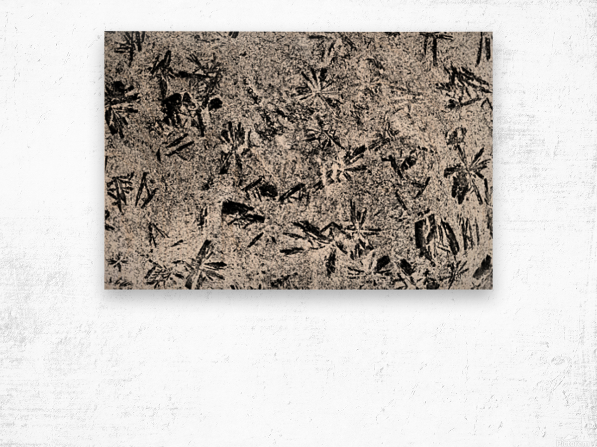 RA005 Wood print