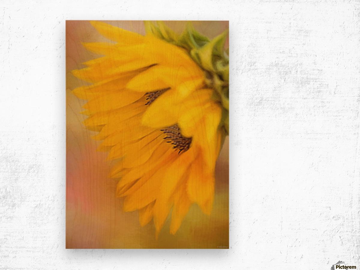 Bring Sunshine - Sunflower Art by Jordan Blackstone Wood print