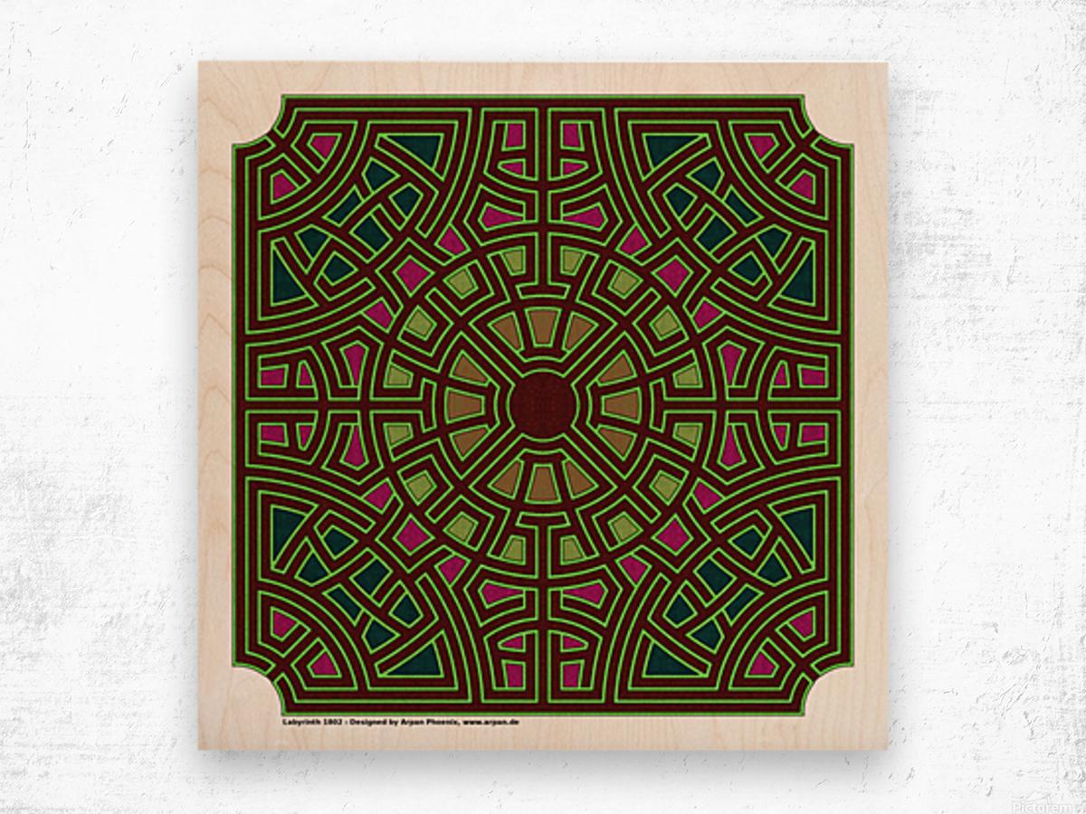 Labyrinth 1802 Wood print