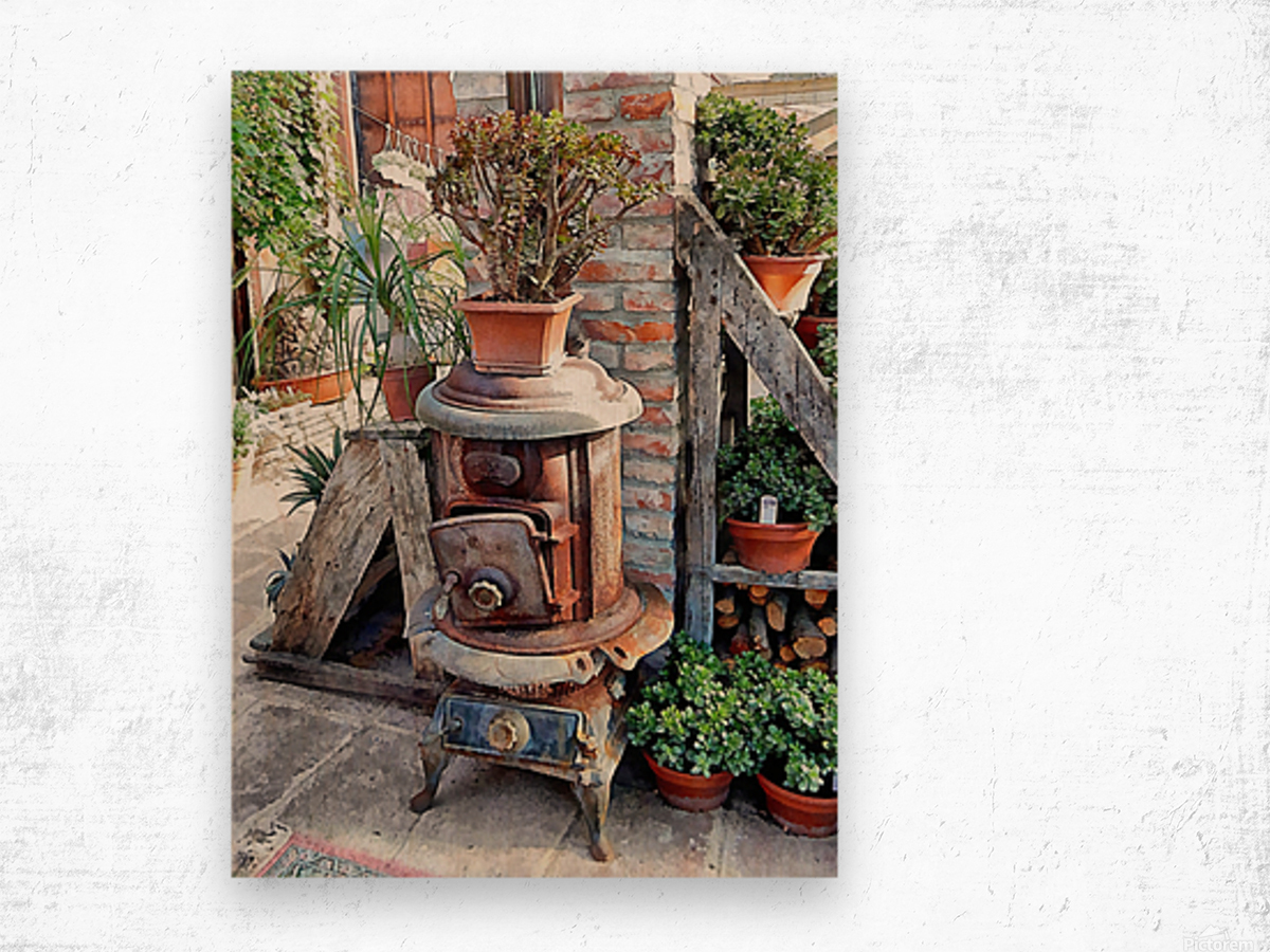Old Wood Stove With Succulents Wood print