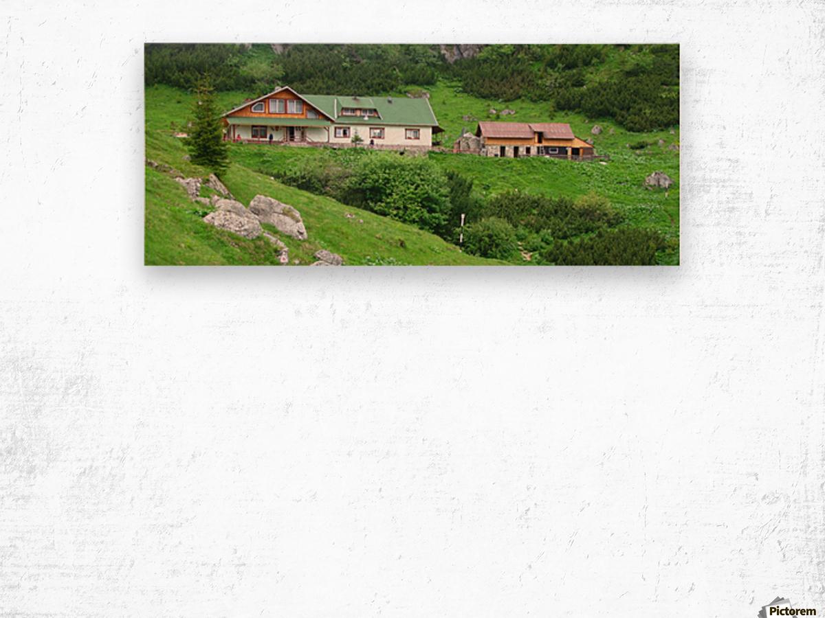 Malaiesti cabin in Romania Wood print