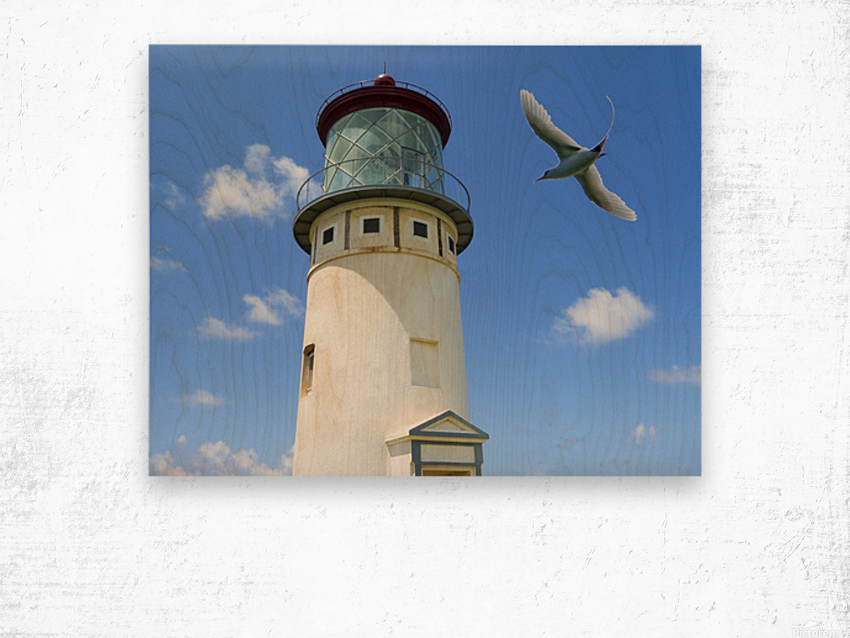 Kilauea Lighthouse and Wildlife Refuge on Kauai Wood print