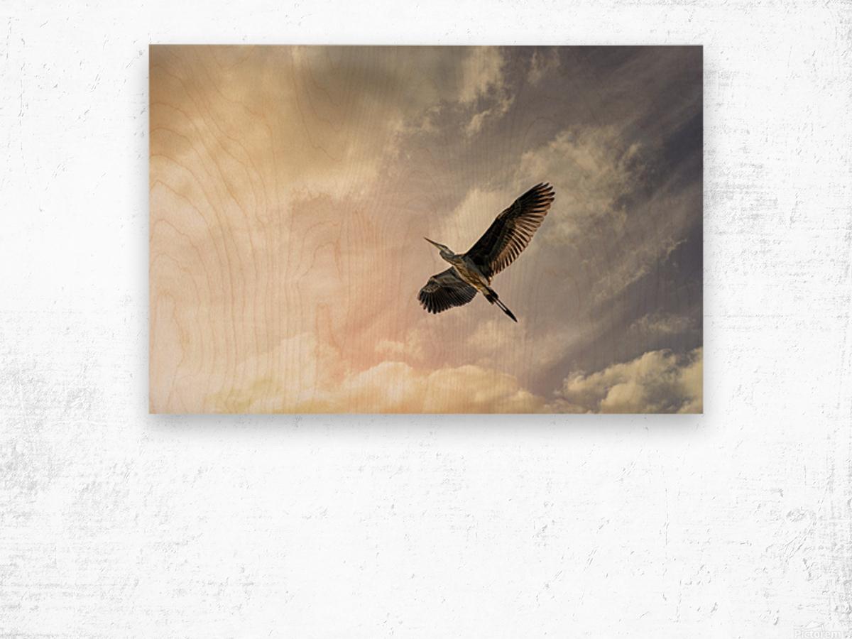 Heron Sunrise Wood print