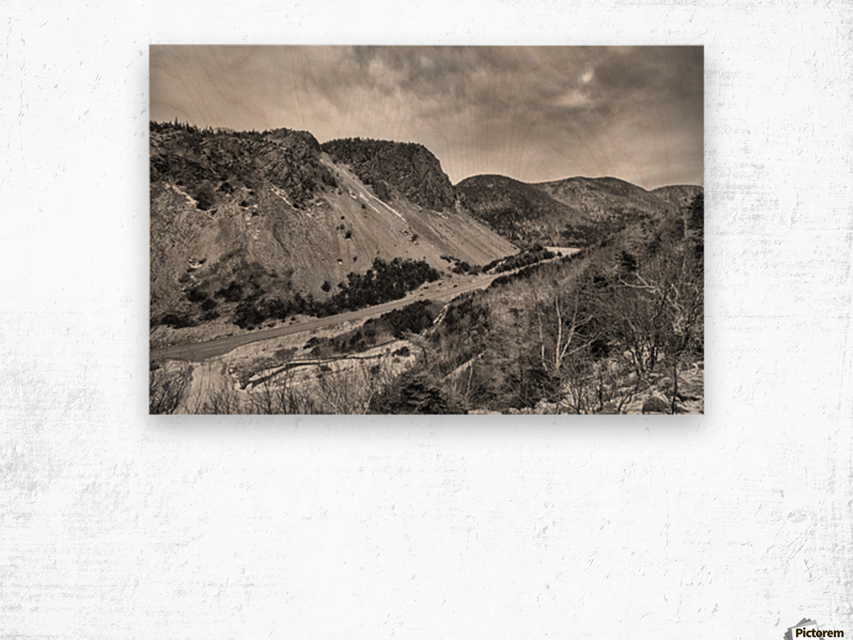 Cliffs of la Grande Falaise Wood print