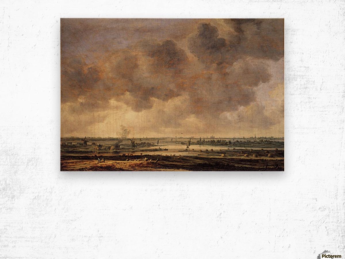 View of the Haarlemmermeer Wood print