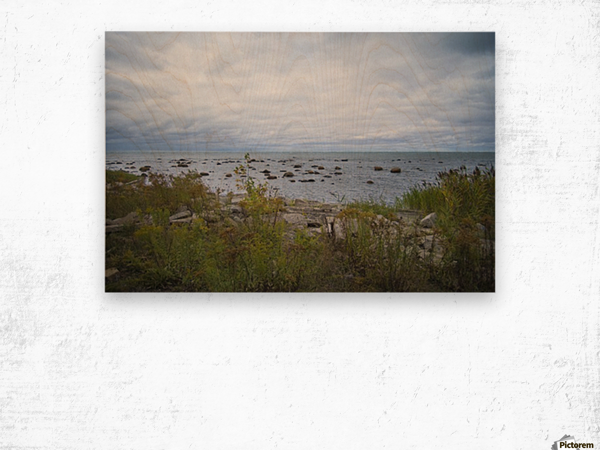 Kettle Point Wood print