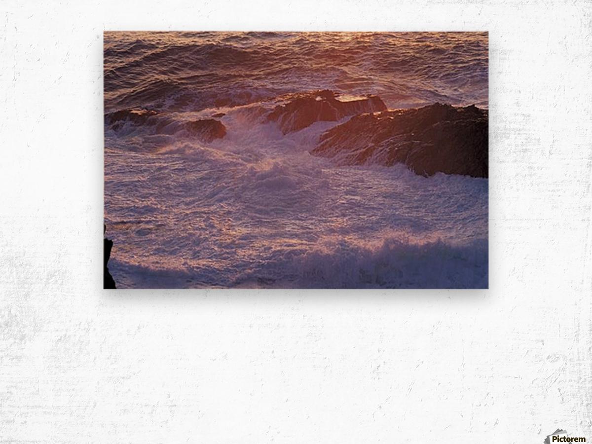 landscape_2_0020 Wood print