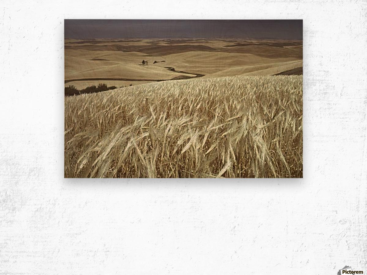 landscape_2_0600 Wood print