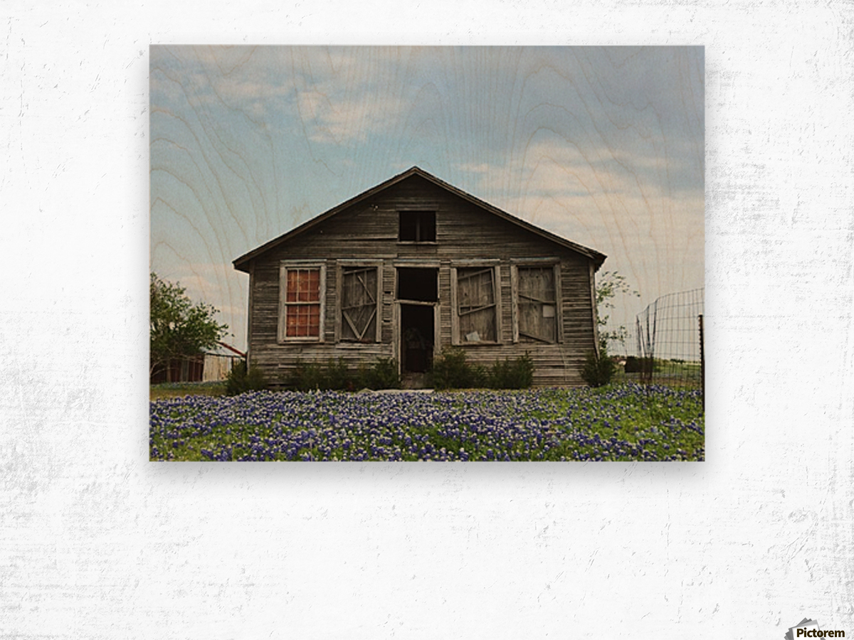 Blue Bonnet Shack Wood print