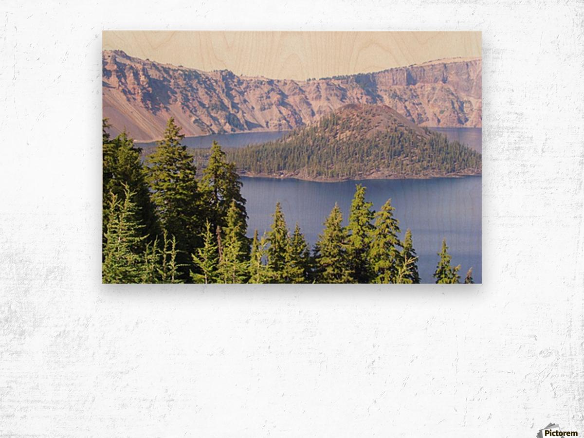 Trip to Oregon 2012 370 Wood print