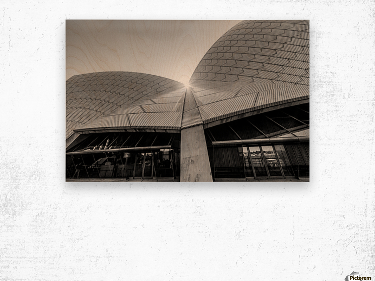 Curves at the Opera House Wood print