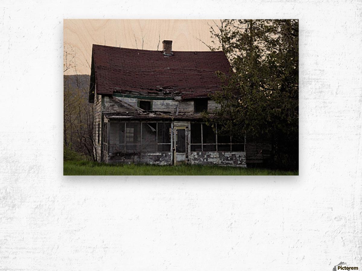 Rural Decay II Wood print