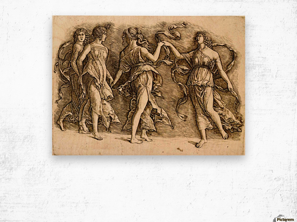 Four Muses Wood print