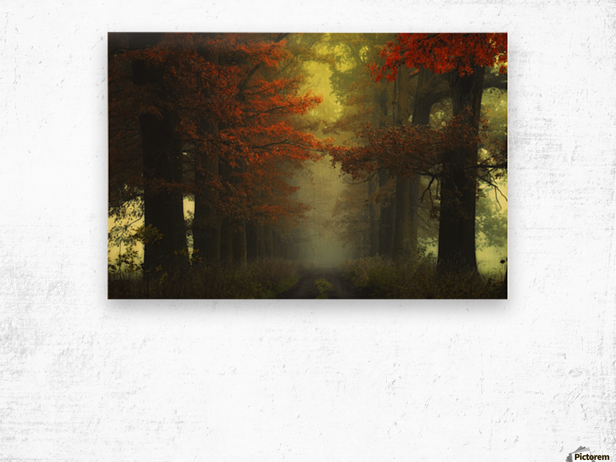 Shaman_s road on the other side Wood print