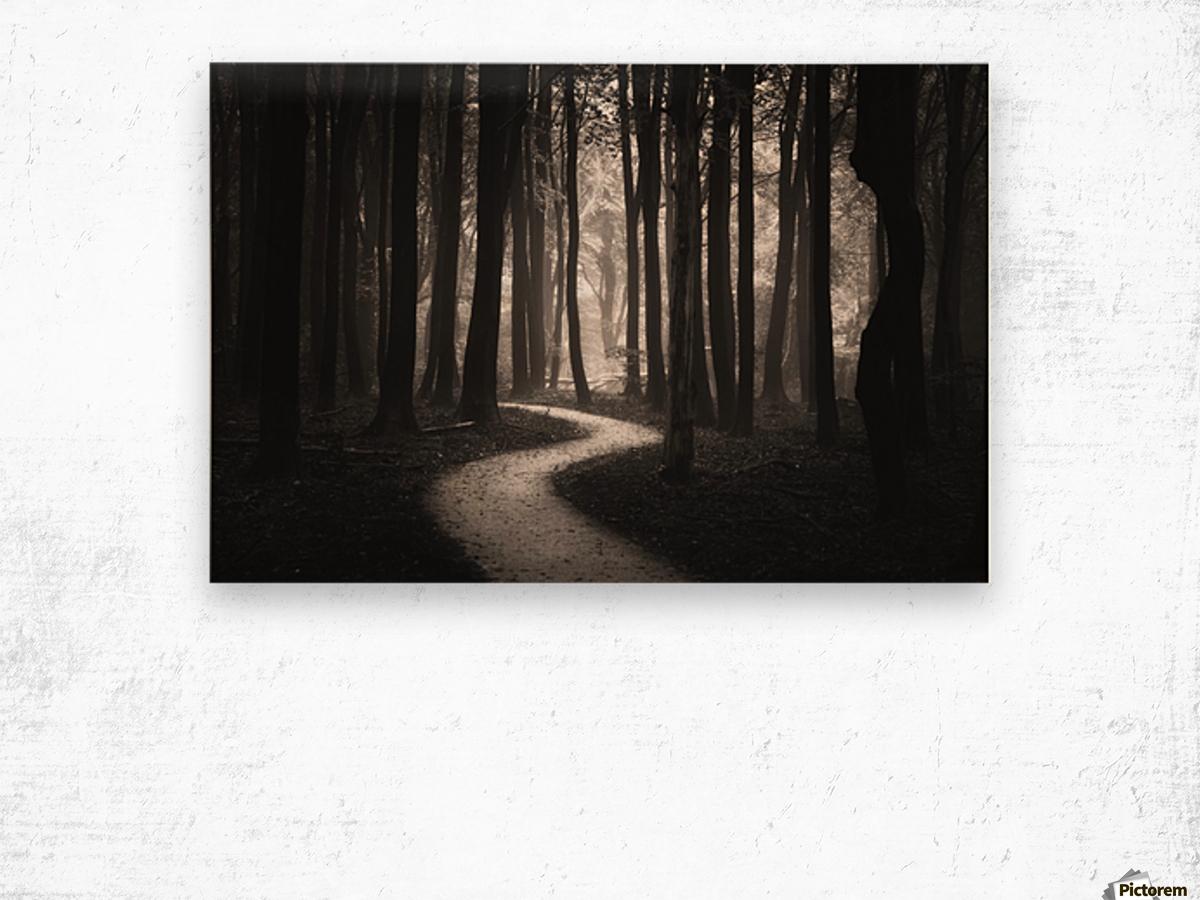 Snakes path Wood print
